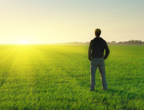 Practical Intuition: Deepening and Expanding the Coaching Relationship